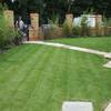 Sloping lawn with bamboo screen, Highgate